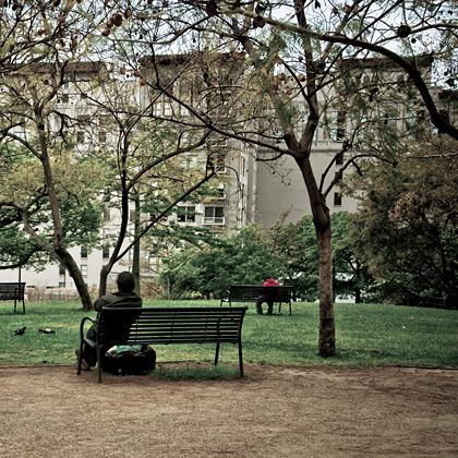 Man In Park.
